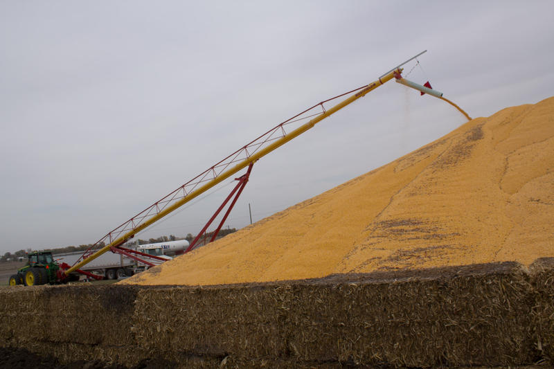 Low prices for farm commodities like corn have many Midwest farmers concerned.