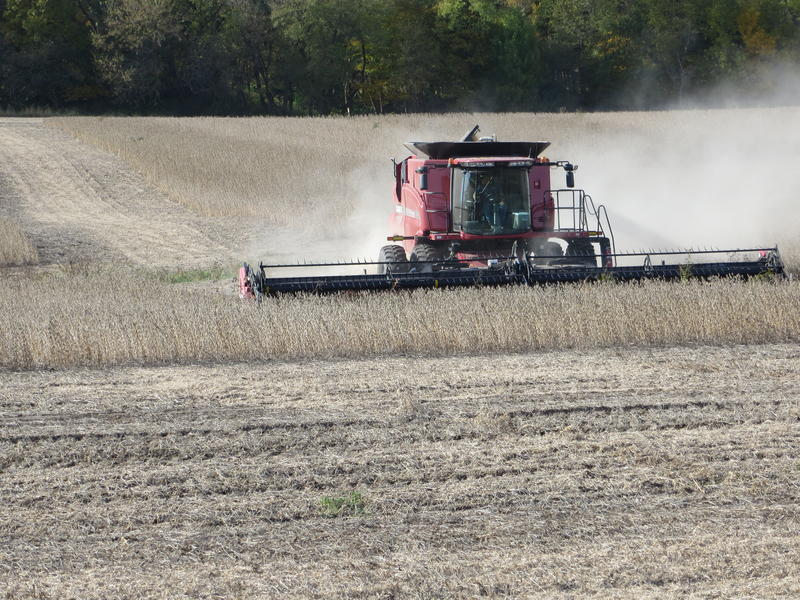 A combine moves through a soybean field near Mt. Vernon last October.