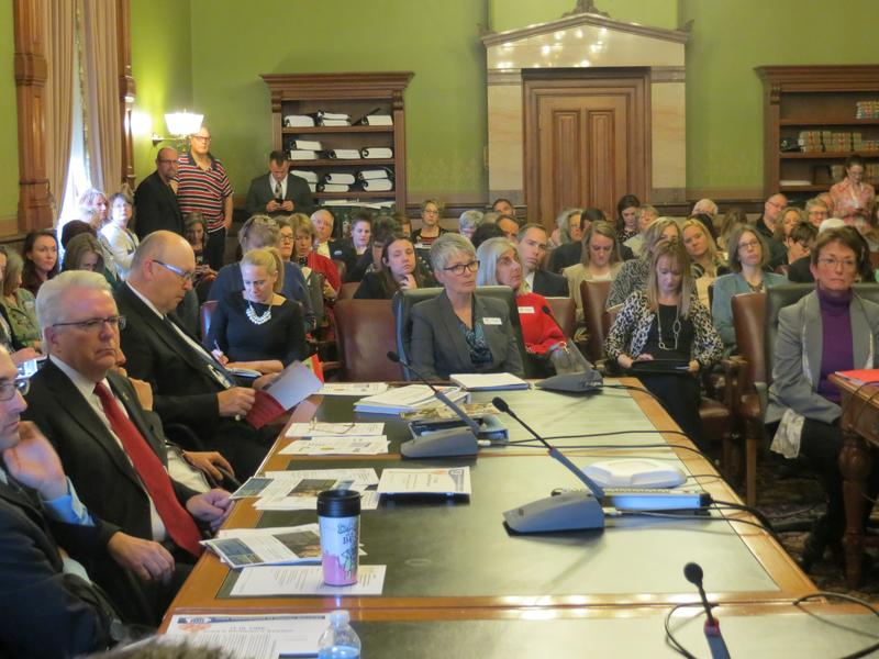 Statehouse committee hearing testimony on children's mental health
