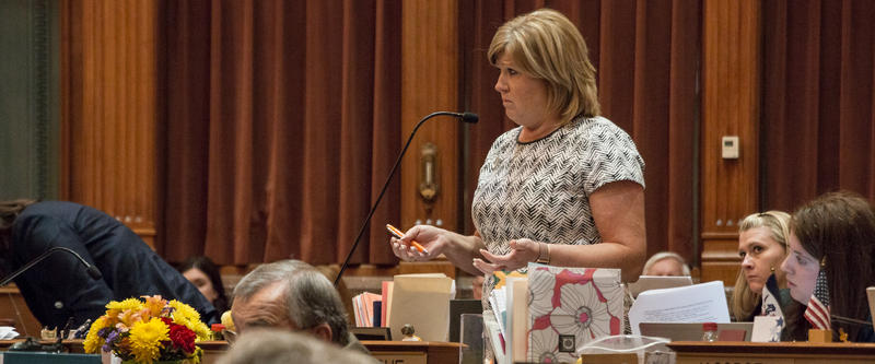 Representative Shannon Lundgren is the floor manager for SF-359.