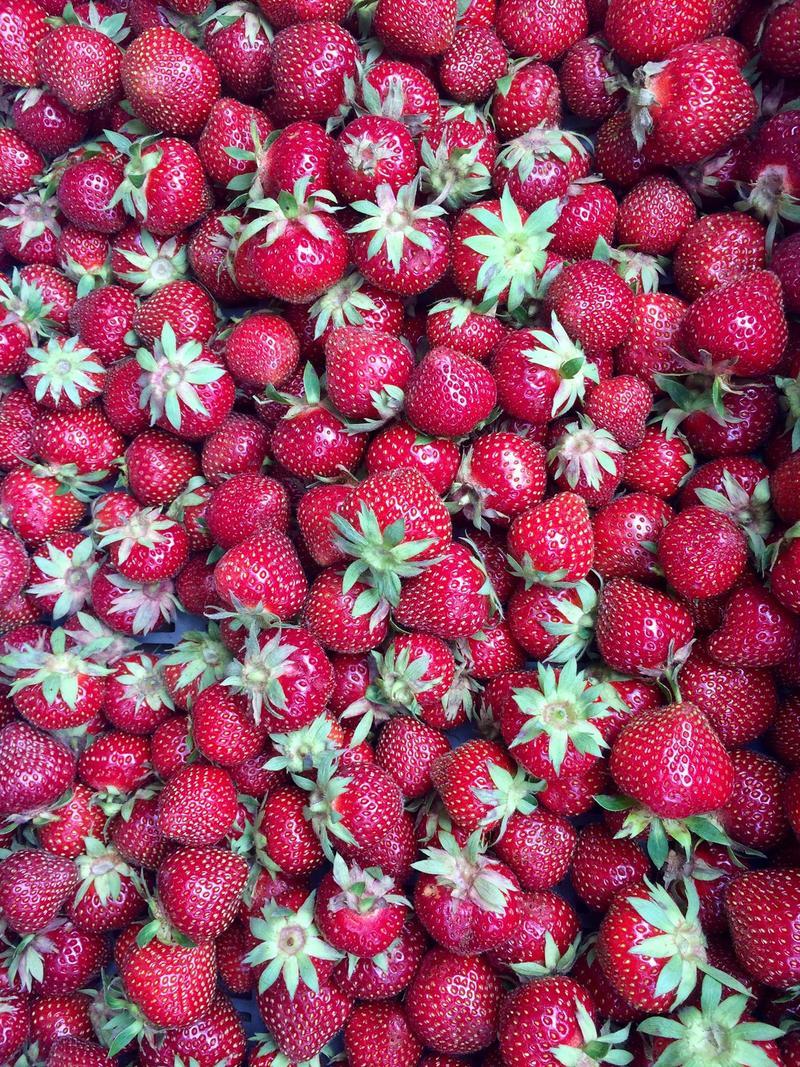 Berries (straw)