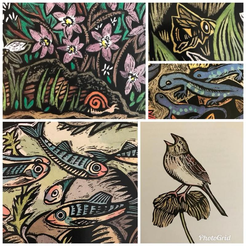 Local artist Claudia McGehee's depiction of several species, including the Iowa Pleistocene snail, the Rusty Patched Bumblebee, and the Henslow's Sparrow