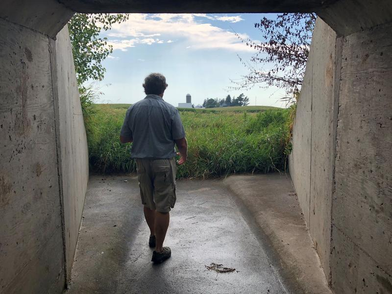 Washington County farmer Rob Stout looks out over some of his land.