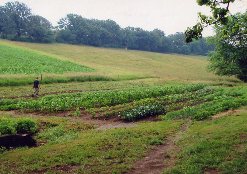 A land trust has permanently set aside 63 acres in Johnson County for sustainable food production. This image depicts another protected farm in Western Iowa.