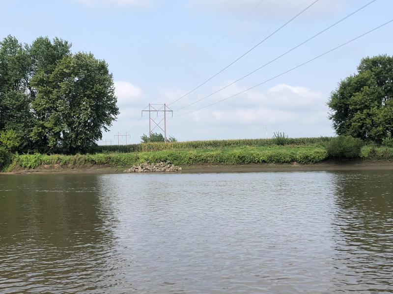On some parts of the Iowa River, row crops run up to within a few feet of the banks, sending pesticides and silt downstream.