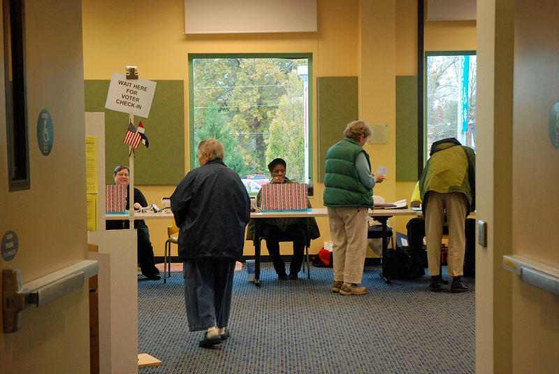 Voters line up at the polls in Columbia, Missouri.