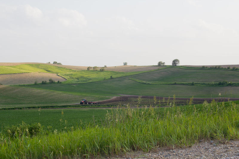 The value of farmland in Iowa is down slightly from last year.