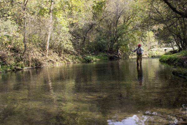 Chris Wasta fly fishes on Bear Creek in Winneshiek County, Iowa. The trout stream is a region of the Midwest known as the 'driftless' region.