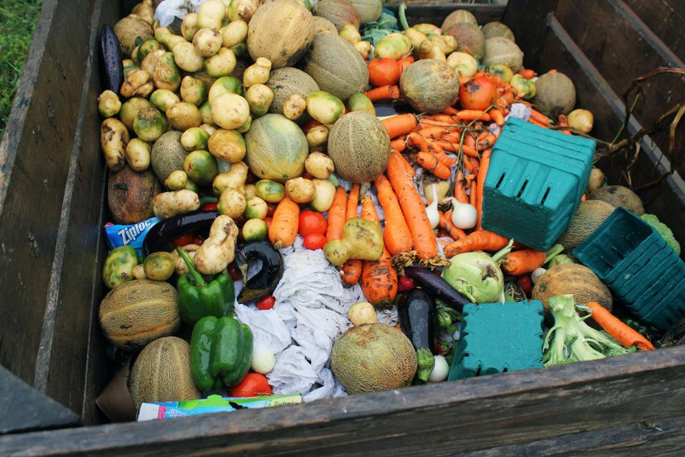 Technology Infrastructure Reduce Food Waste On The Farm