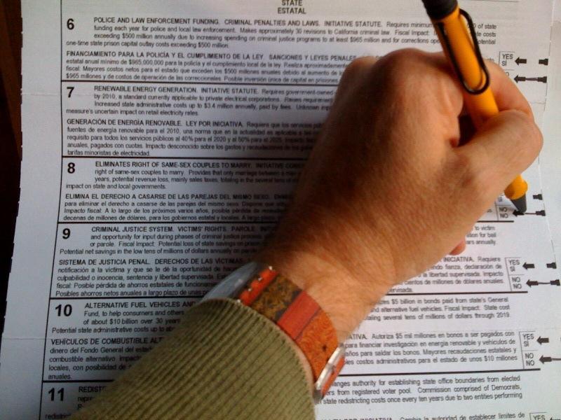 What is criminal disenfranchisement essay