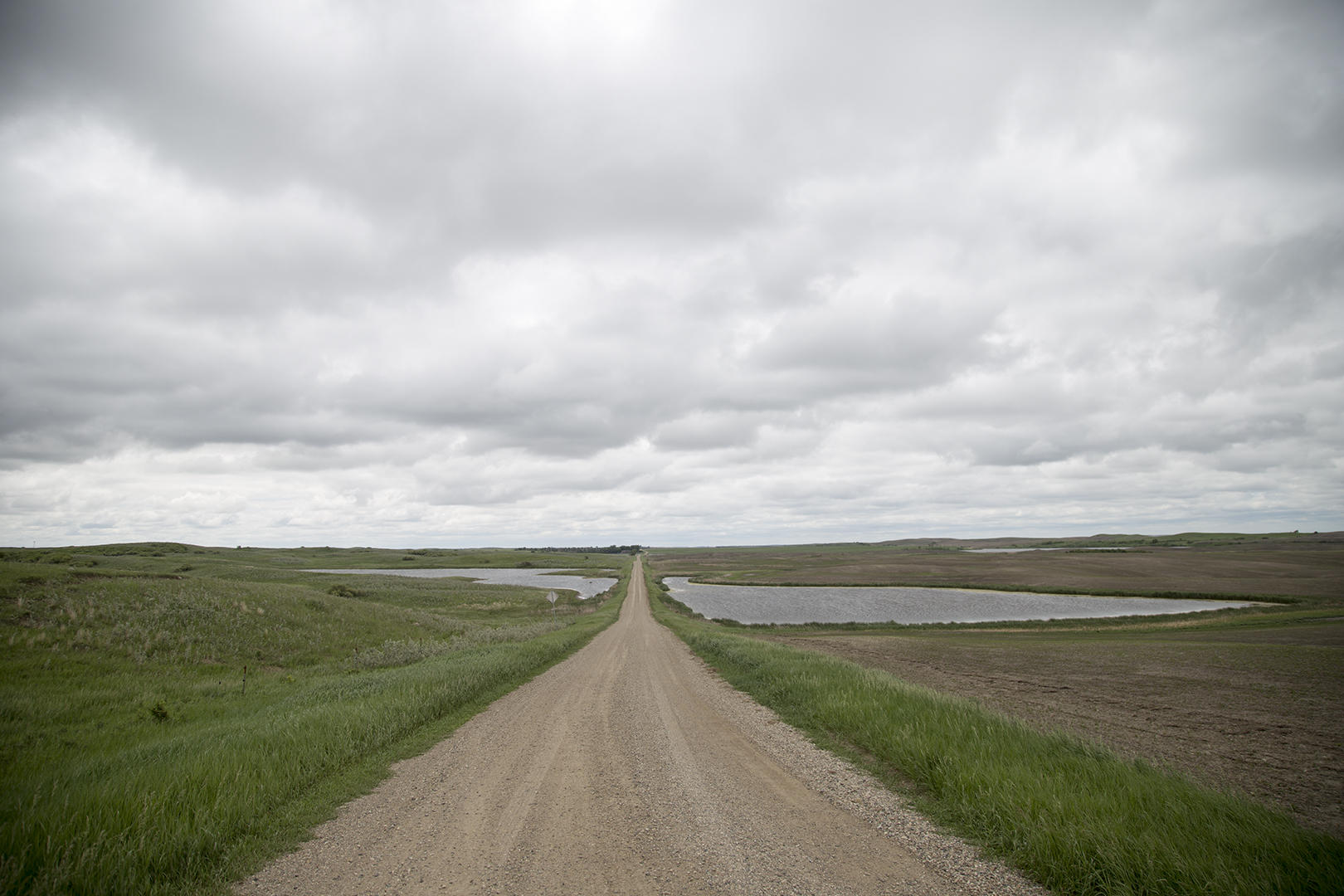 the changing landscape of the prairie pothole region