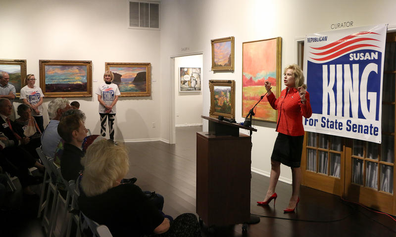 (Photo by Joy Bonala) State Rep. Susan King  during a conference to announce her decision to run for Texas Senate District 24 Monday, September 28, 2015 at the Center For Contemporary Arts.