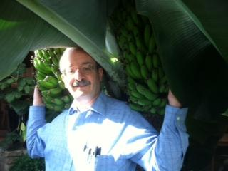 "Energy efficiency expert Amory Lovins in his ""Banana Farm""."