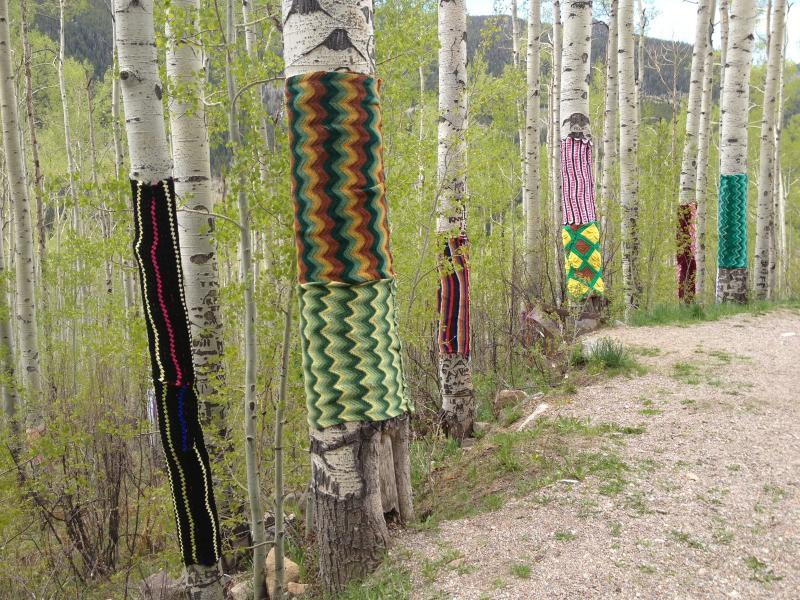 Yarn bombing with afghans from Ohio, on Aspen trees along Highway 82, east of Aspen.