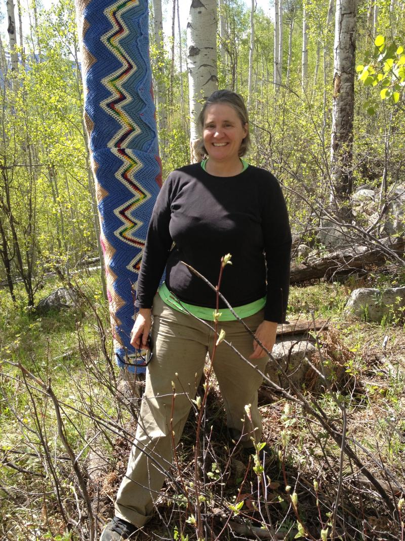 The artist responsible for a yarn bombing near Aspen, along Highway 82.