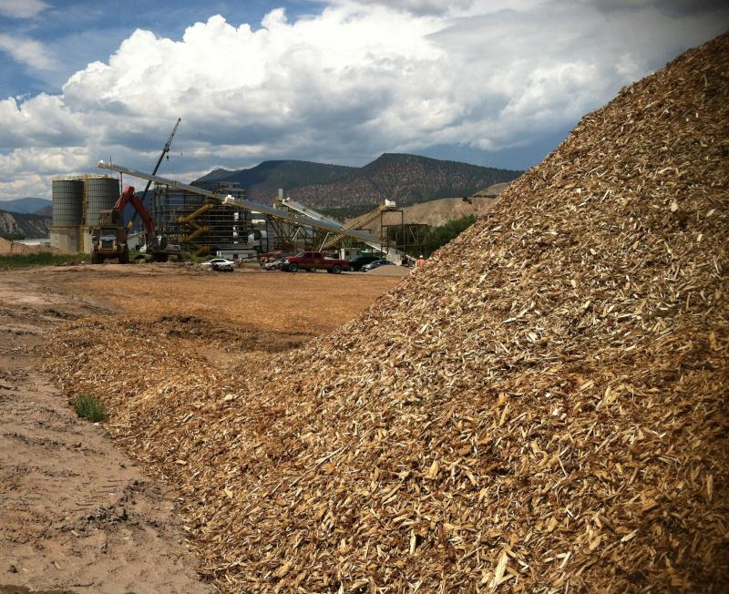 A new power plant in Gypsum will use wood chippings to generate electricity.