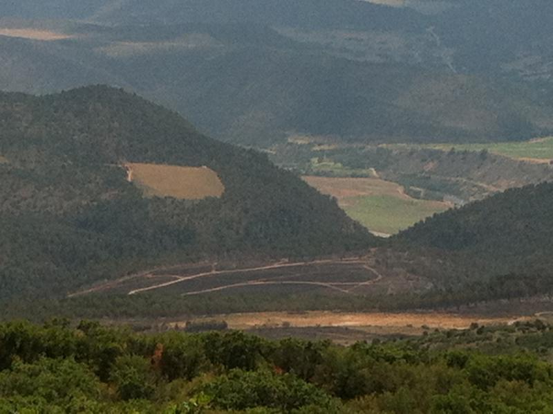 The Red Canyon Fire near Glenwood Springs is 100% contained. The blackened ground can be seen here, with vehicle tracks criss-crossing the area.