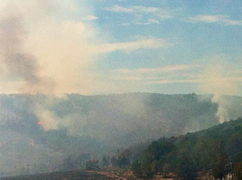The fire is burning in juniper, pinon and gambrel oak vegetation.