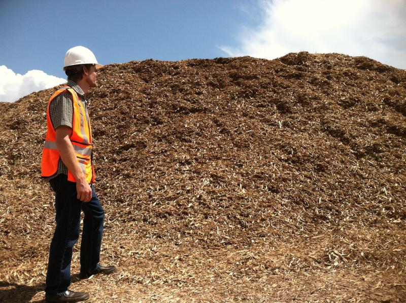 Once it's up and running, the plant will burn about 250 tons of wood chips each day.