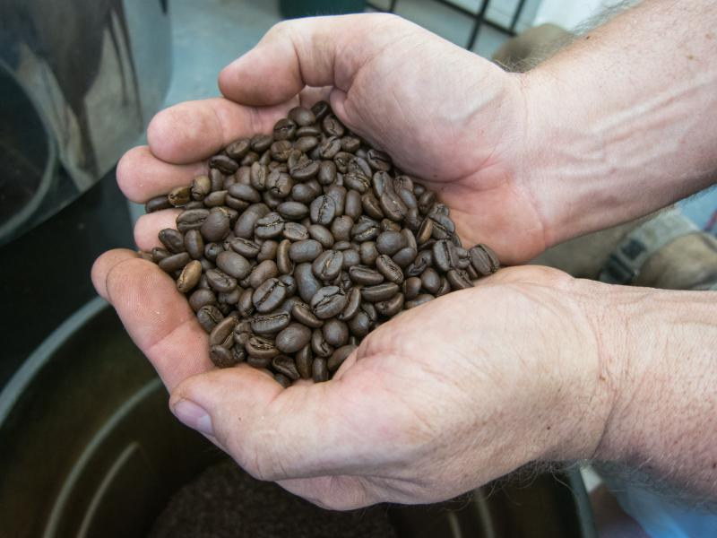 Roasted beans, the finished product. The process of getting to this stage is much more complex than it seems.