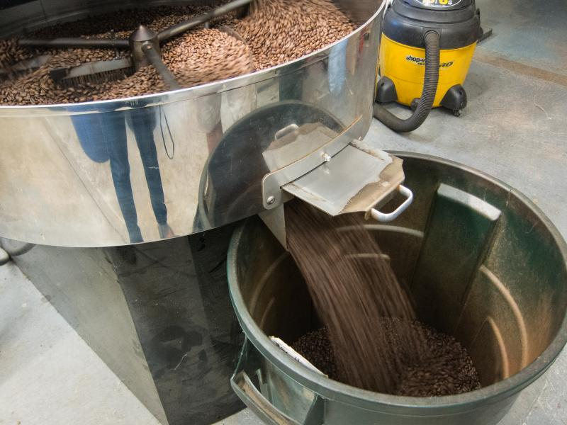 Roasted beans pour into a bucket after cooling. They'll soon be packaged and distributed.