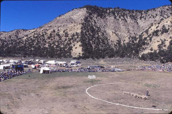 The Trials are held just outside of town on a stretch of ranchland.