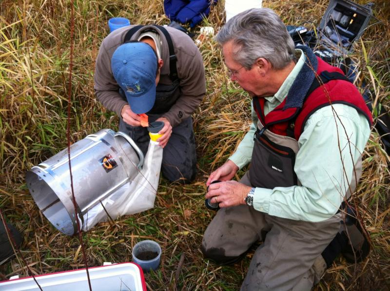 The Roaring Fork Conservancy is leading a study of the Fryingpan River. It includes catching and identifying aquatic insects.