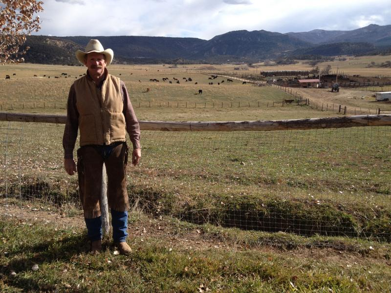 Frank Daley, Rancher and president-elect of the Colorado Cattlemen's Association, stands on his ranch in Divide Creek.