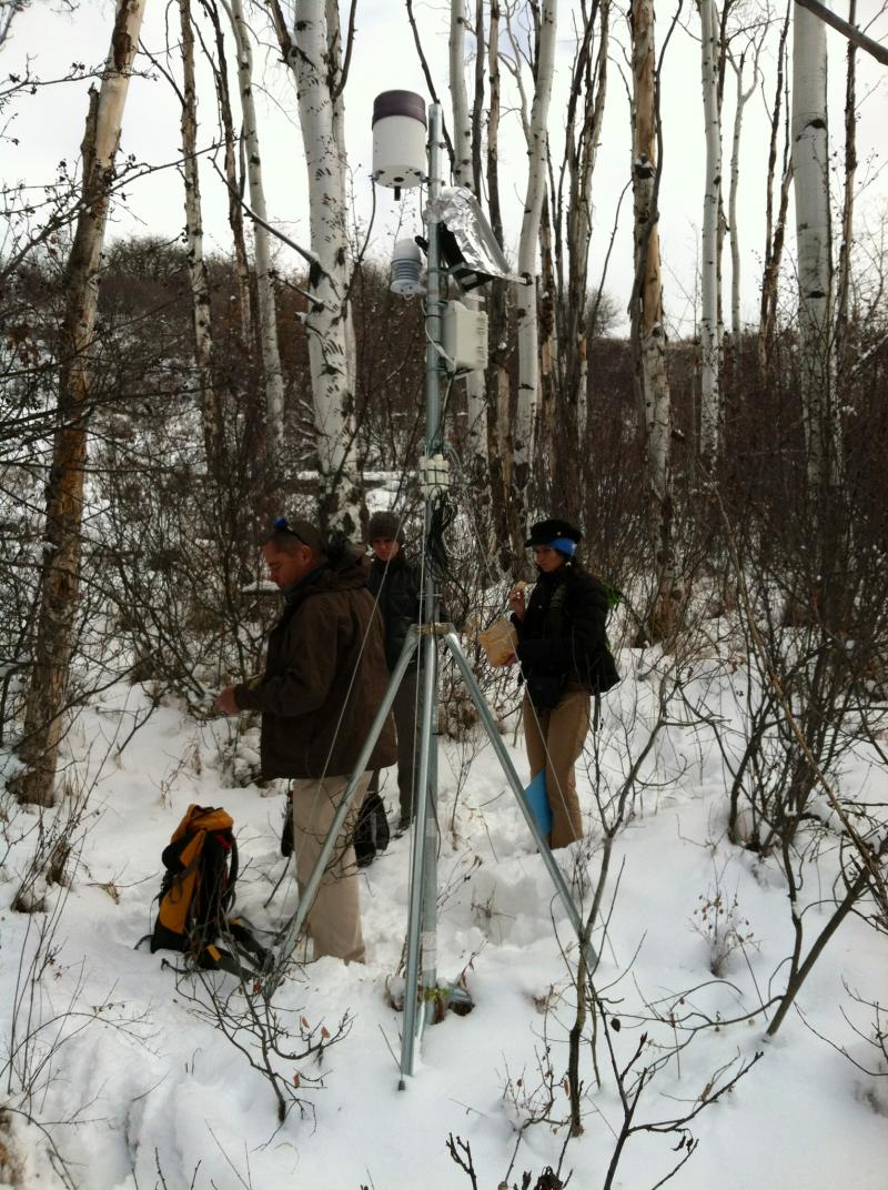 The tower includes three soil moisture sensors, a data-logger and a rain gauge. It's about 10 feet tall.