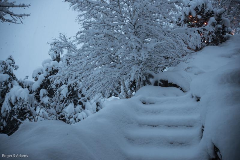 Snow in Basalt - January 31st, 2014