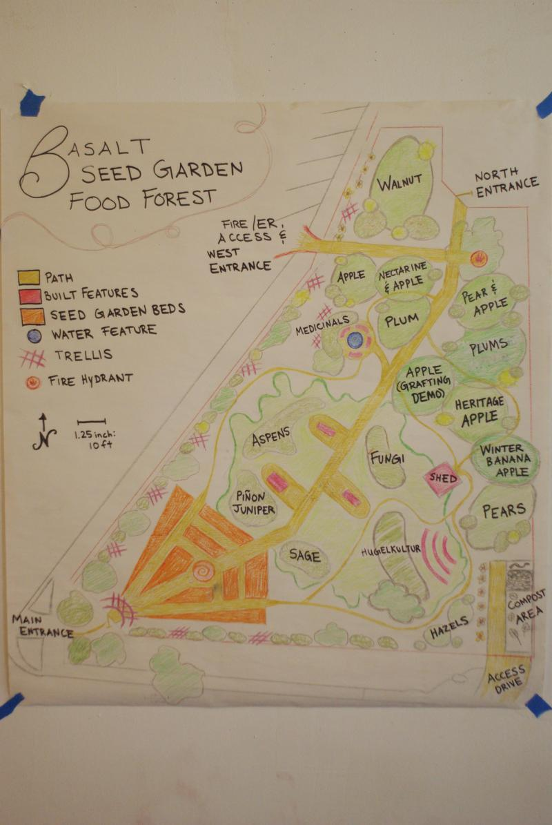 This sketch shows what crops are being considered in Basalt's food forest. It's an urban, edible garden.