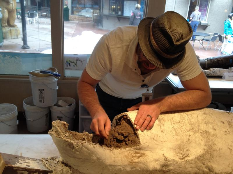 Tom Temme, Paleontologist with the Ice Age Discovery Center and the Denver Museum of Nature and Science, scrapes clay off a mastodon tusk.