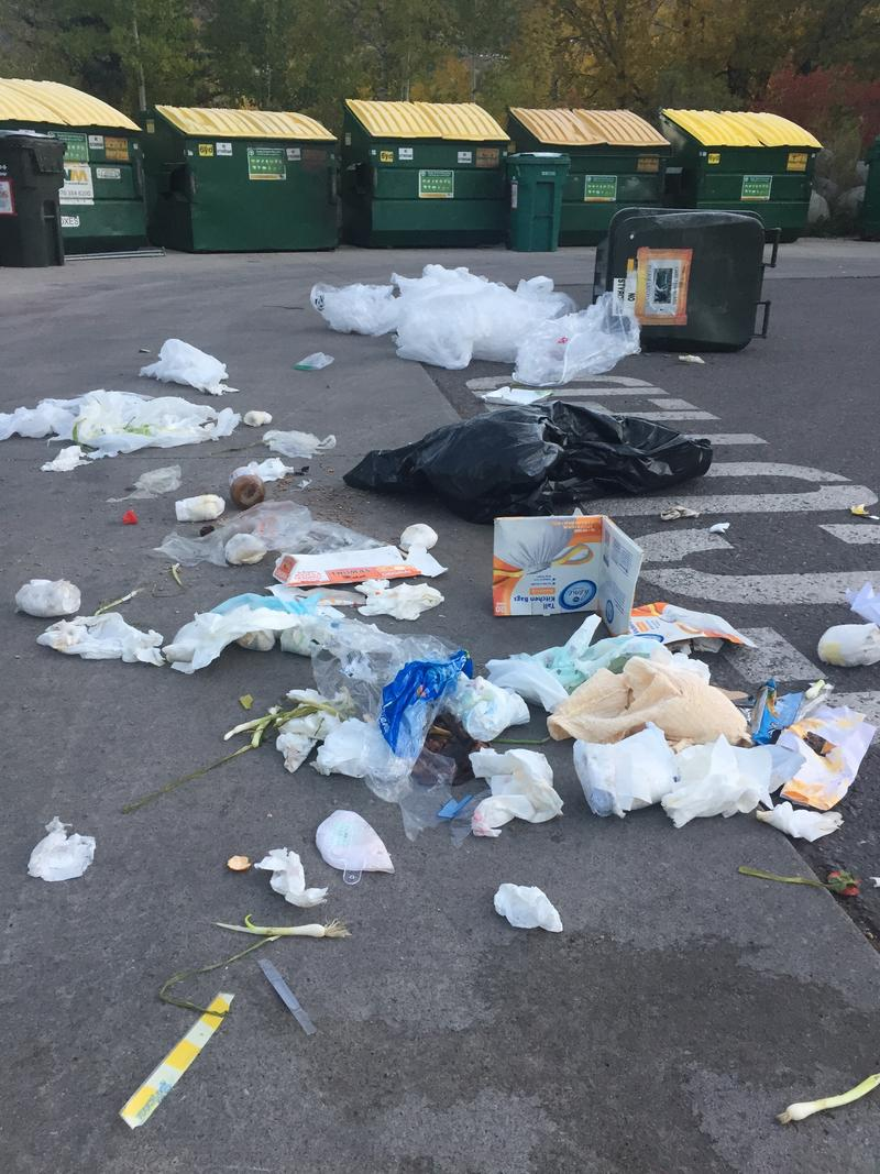 Diapers, dog poop and empty food containers are just some of the items illegally discarded at the Rio Grande Recycling Center. Bears are able to get into recycling cans, forcing city staff to clean up the mess every morning.