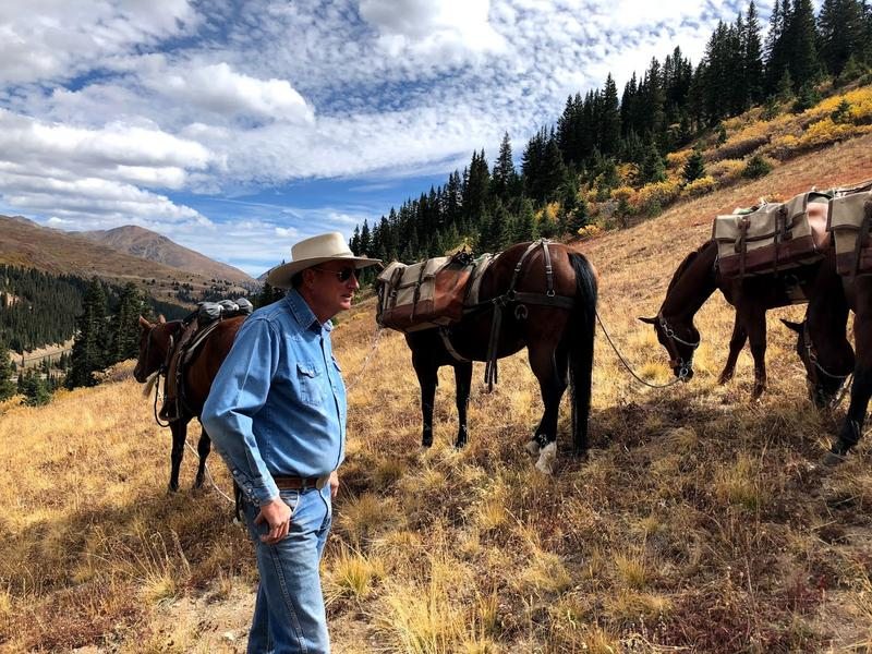 Glenn Ryan pauses to let his horses and mules rest as they haul out rebar on Independence Pass.