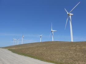 Wind turbines at the Altamont Pass