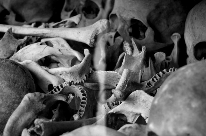 Bones left behind in the Killing Fields of Cambodia