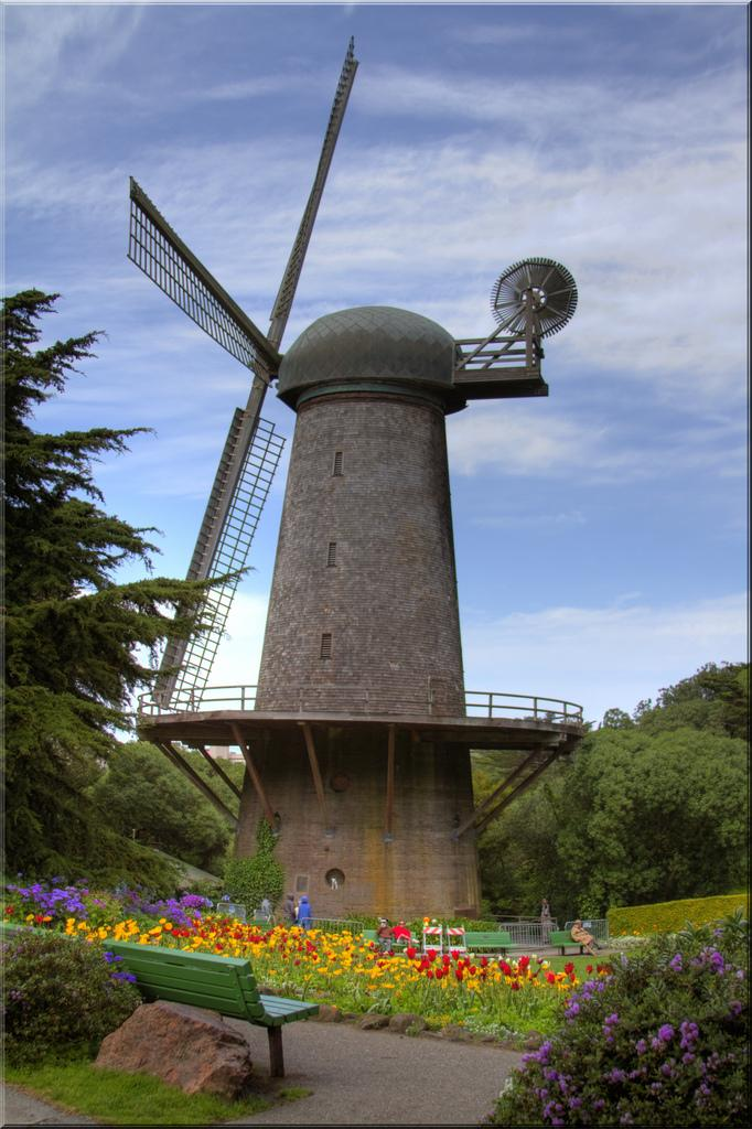 The Murphy Windmill, Golden Gate Park (San Francisco, CA)