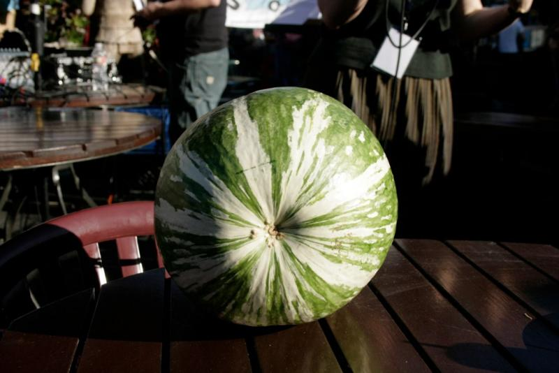 This is a gourd, if you can believe it. What would you name a whopper like this one?