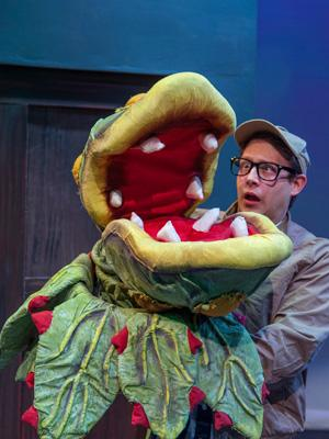 "Seymour (Adam Cotugno) and Audrey (Adrienne Walters) find their plant shop is suddenly popular, in the Foothill Theatre production of ""Little Shop of Horrors"""