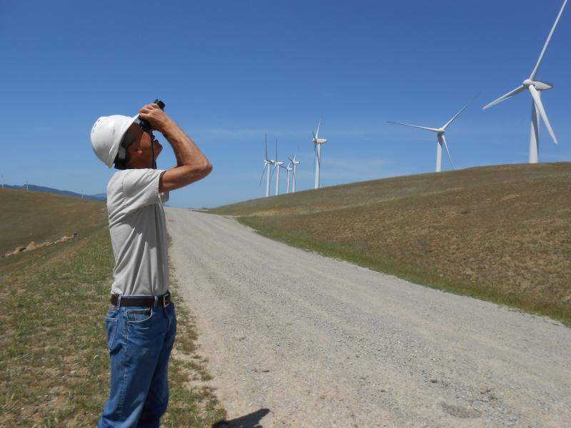Wildlife biologist Doug Bell birdwatching at the Altamont Pass