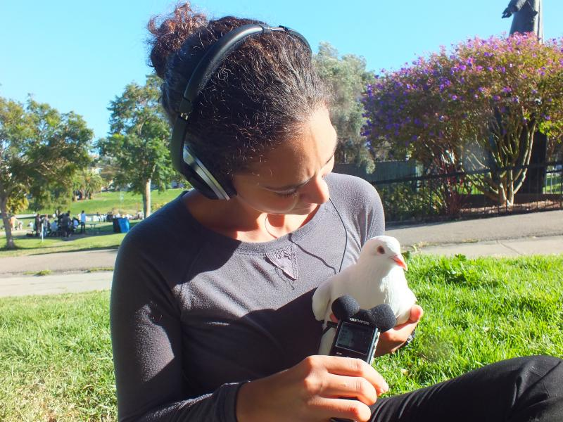 Reporter Martina Castro interviews a pigeon.