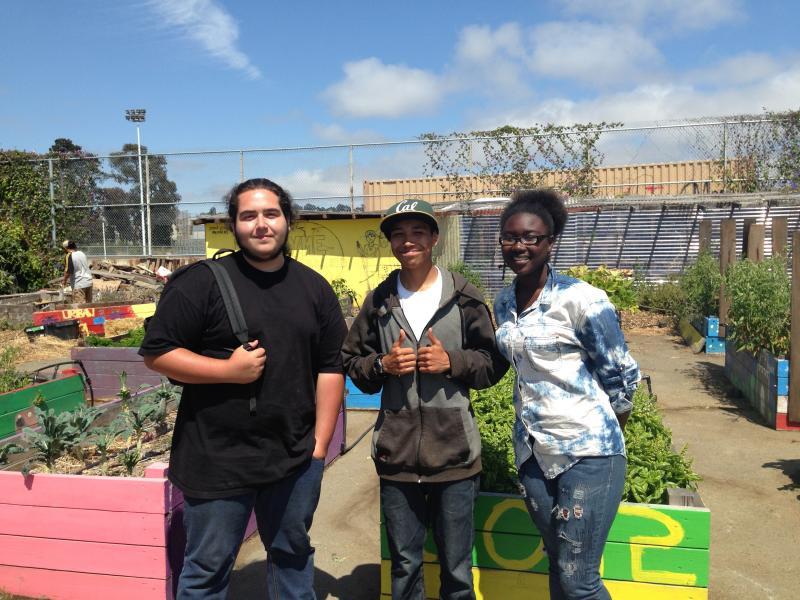 Urban Tilth summer apprentices Dante Ricardo, Carlos Hernandez, and Nikia Whittie in the Richmond High garden