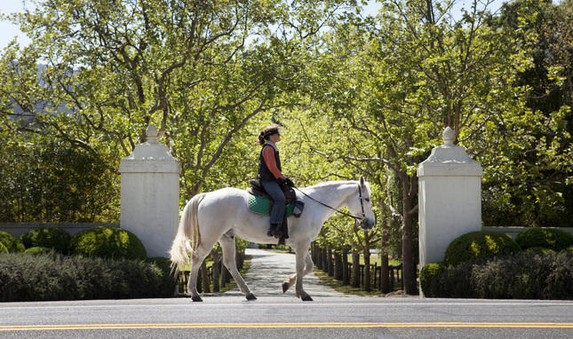 An equestrian makes her way down Canada Rd. in Woodside, Calif. Friday, April 3, 2015. Communities using the most water, like in Woodside, will be under the gun to cut back more than communities already using less. (Patrick Tehan/Bay Area News Group)