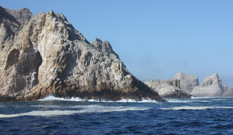 One of the Farallon Islands, where white sharks congregate each year
