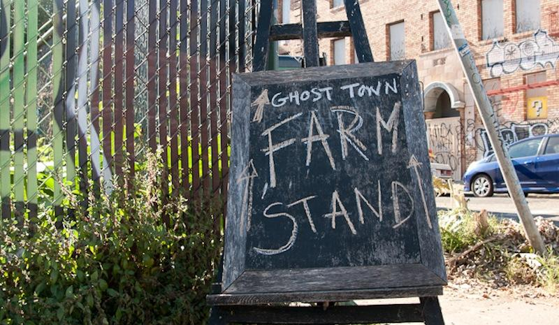 Novella Carpenter's farm stand in Oakland