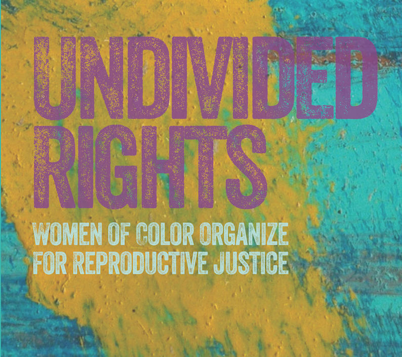 Undivided Rights by BY JAEL SILLIMAN, MARLENE GERBER, LORETTA J. ROSS AND ELENA R. GUTIÉRREZ