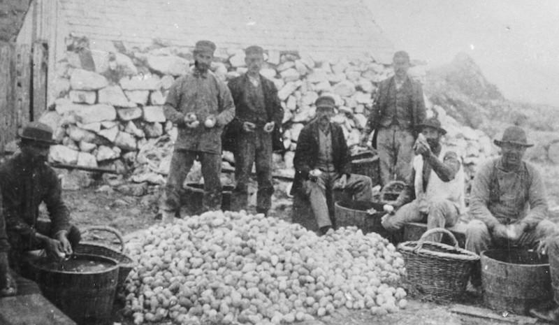 You've heard of the San Francisco Gold Rush, but that rush spurred another, lesser-known event: the Egg Rush. In the early 1850's, about a half-million eggs were gathered per year from where is now known as the Farallon Islands.