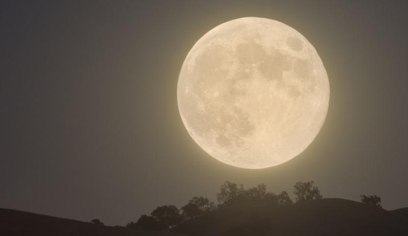 Tonight's Harvest Moon as it rose above the Calaveras Hills.   © 2013, John Krzesinski.