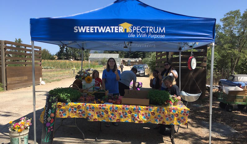 Tamsin Kearns with staff and residents at Sweetwater Spectrum's farmstand.