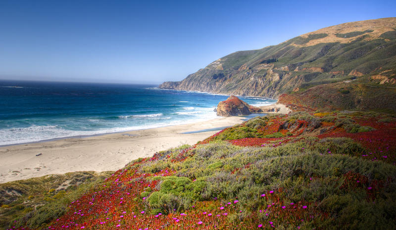 Recent mudslides near Big Sur kept tourists away from occupying beaches like this one.